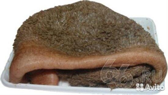 Как правильно готовить говяжью печень - corlighbedos