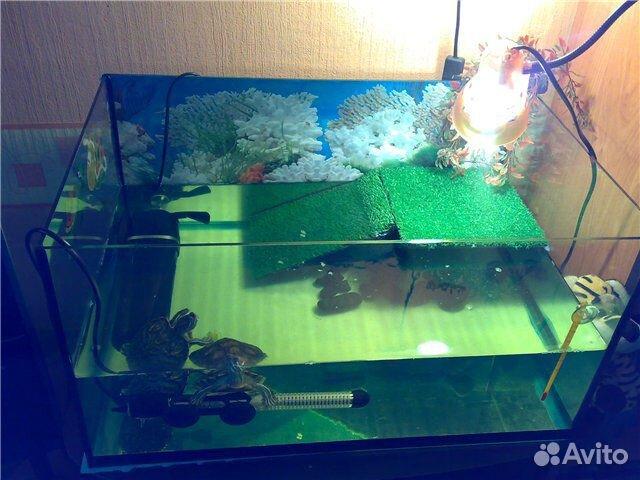 Аквариум для черепахи красноухой купить цена