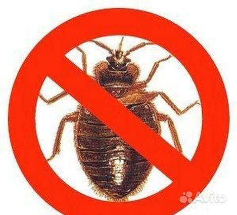 Уничтожение клещей,клопов,тараканов купить на Вуёк.ру - фотография № 1