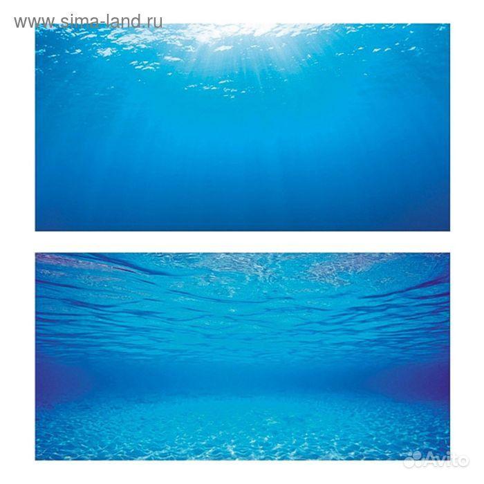 Постеры для аквариума