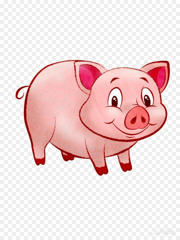 Повара, свиньи картинки для детей