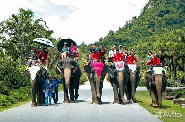 самые интересные экскурсии в тайланде мясо выбрано, определены