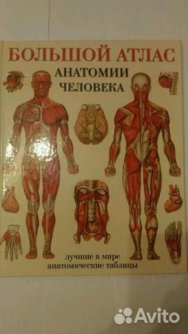 в анатомические таблицах атласы