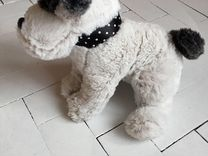Pucci Pups,Button Blue