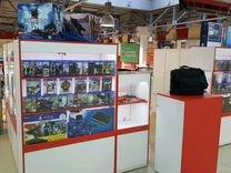 Островок игровой индустрии (PS4-3, XBoxOne-360)